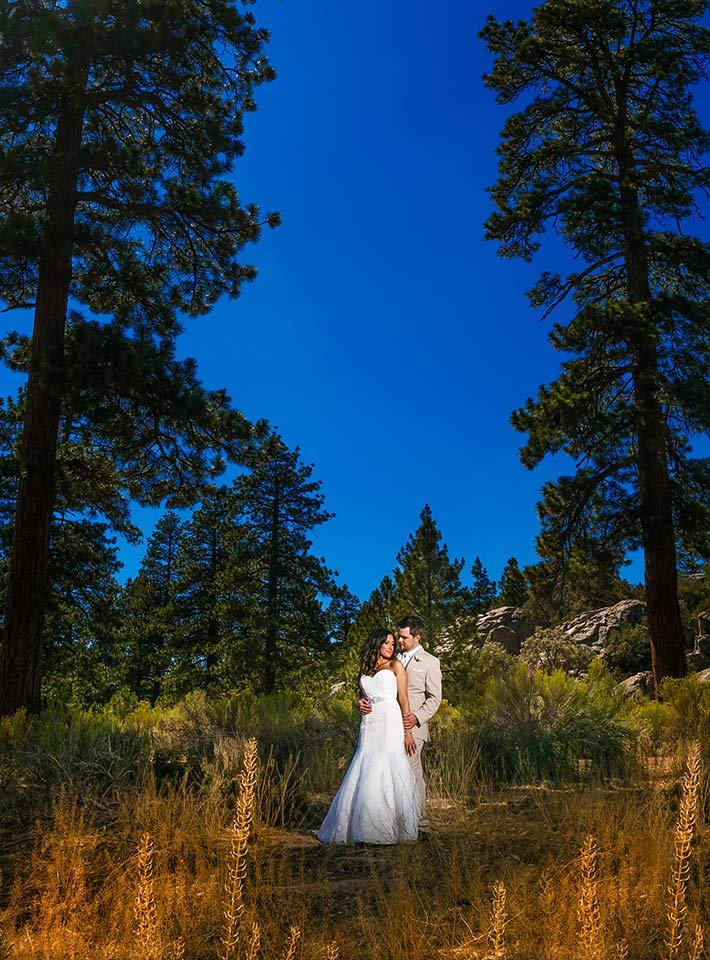 Summer Wedding at Gold Mountain Manor