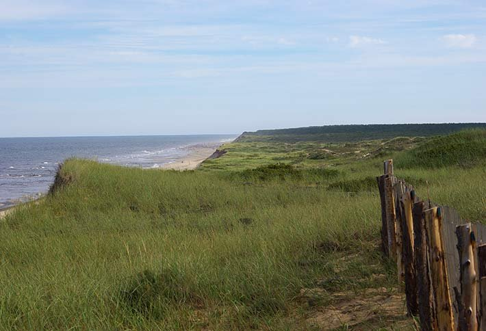 Cape Cod beaches near Sea Meadow Inn in Brewster, MA