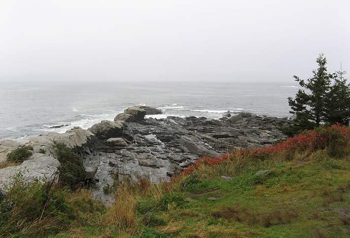 Cape Cod near Sea Meadow Inn in Brewster, MA