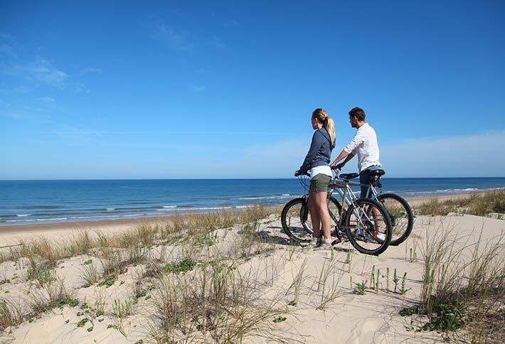 Activities in Cape Cod near Sea Meadow Inn in MA