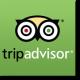 Tripadvisor Logo Square