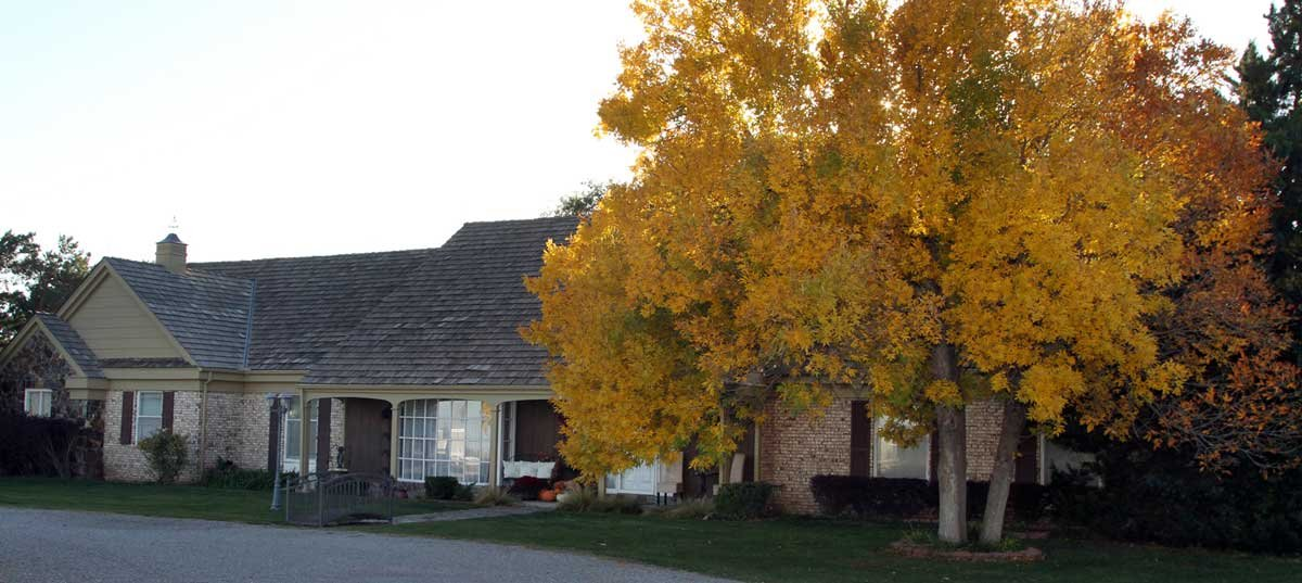 Exterior of the Inn during fall