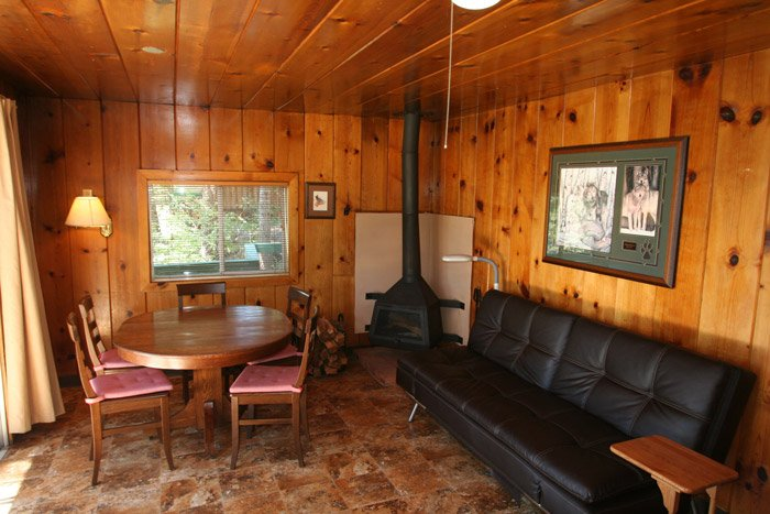 Sitting area with fireplace in a cabin