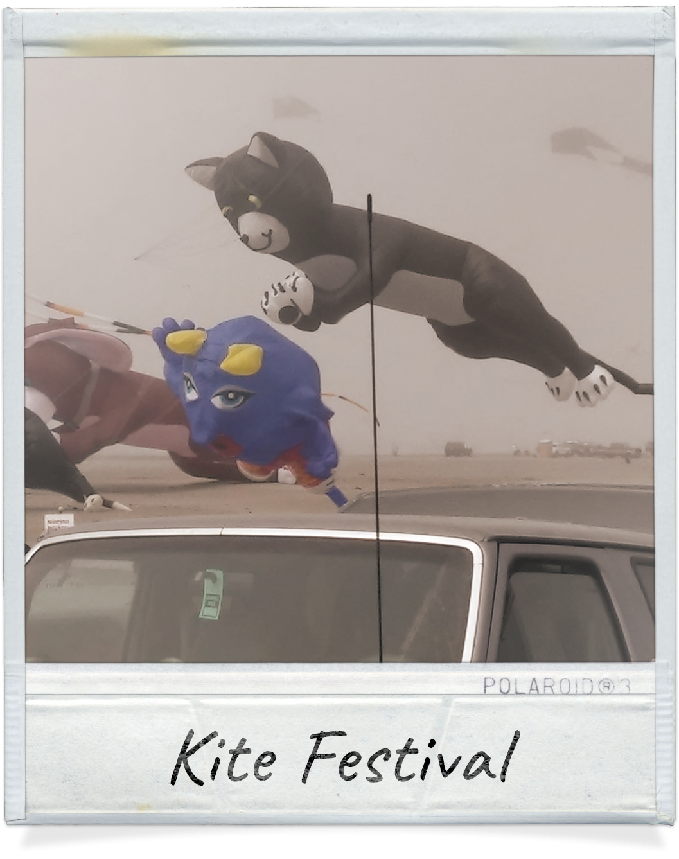 Kite Museum near Coastal Inn in Long Beach, Wa
