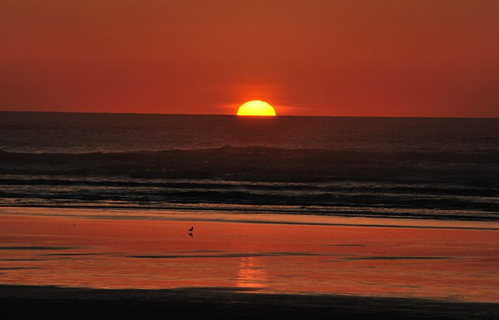Things to do near the Inn at the Shore in Seaside, Oregon