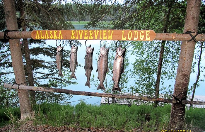 Fishing packages at Alaska Riverview Lodge