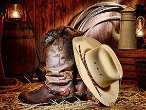 cowboy near Idaho Bed and Breakfast Association