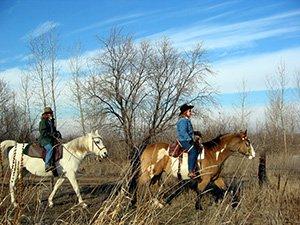 horseback riding near Idaho Bed and Breakfast Association