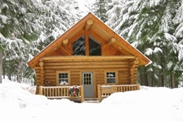 Log cabin surrounded by snowy trees