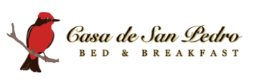 Casa de San Pedro Bed & Breakfast
