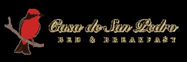 Casa de San Pedro Bed & Breakfast