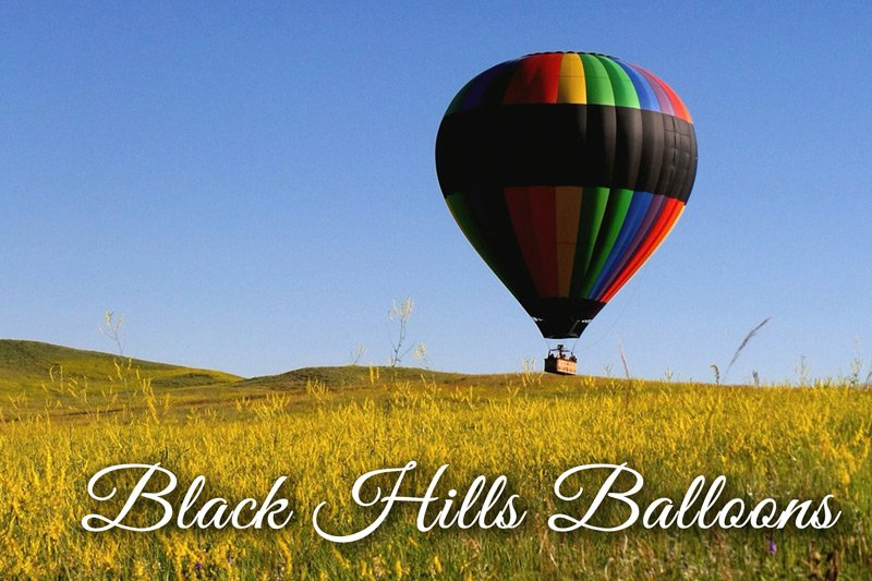 Hot Air Balloon in field