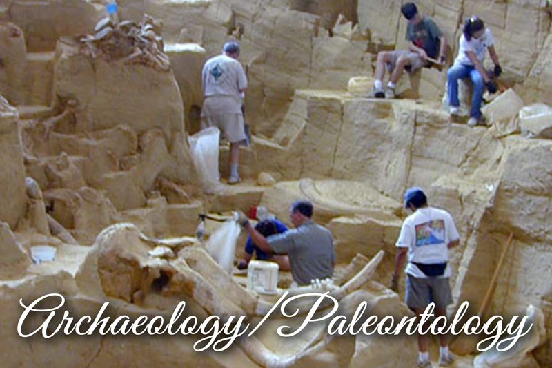 Group of archeologists excavation