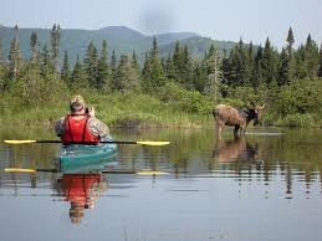 canoe on saco river