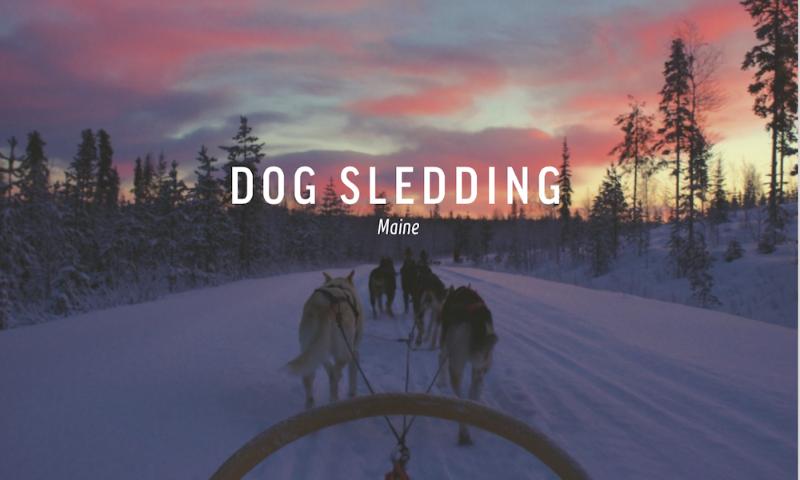 dog sledding maine