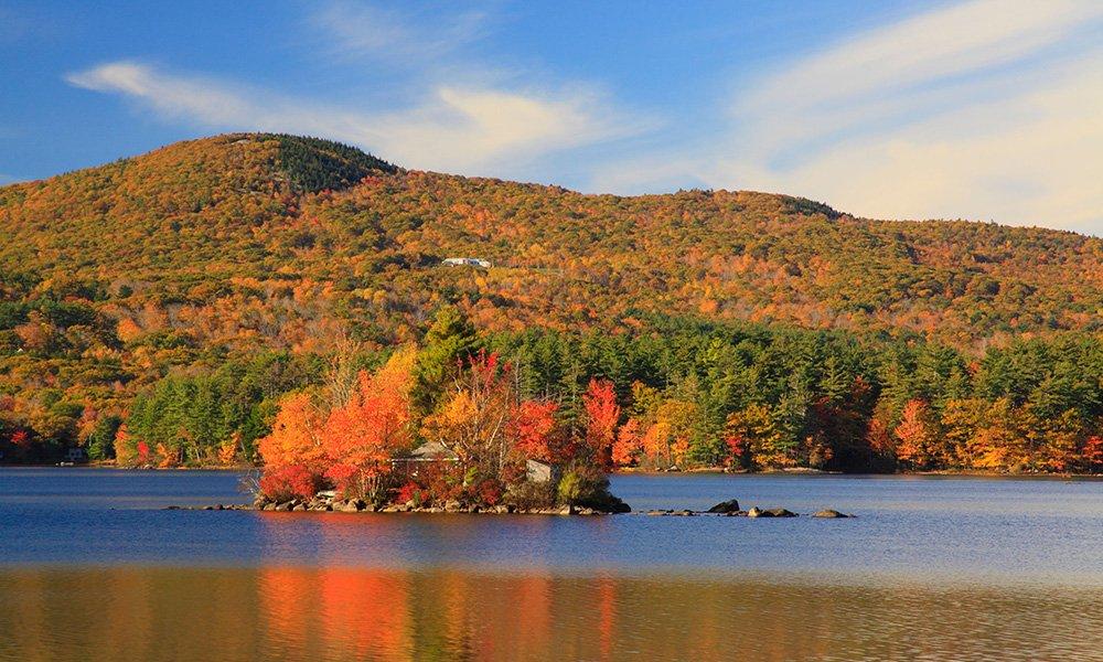 coastline with fall leaves