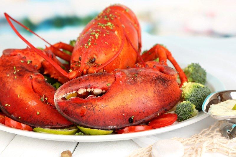 Spouter Inn Maine lobster