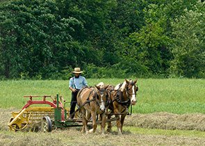 Man with Plow and Horses