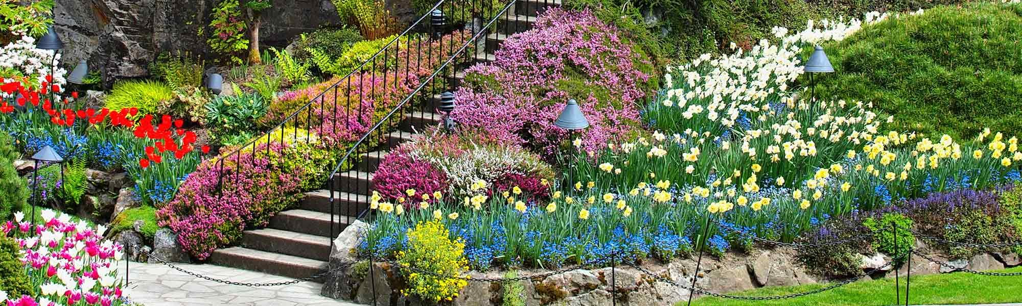 Stairs in a Flower Garden
