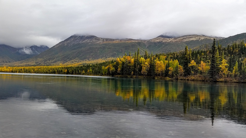 calm waters and a tree-filled shoreline