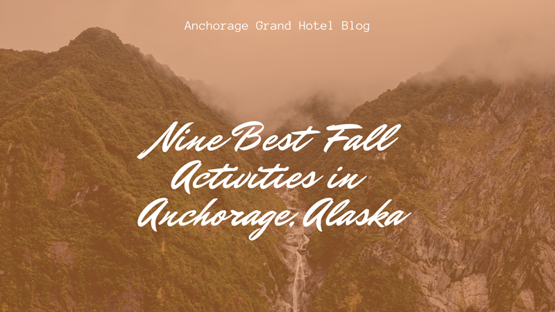 The Nine Best Fall Activities in Anchorage blog cover image