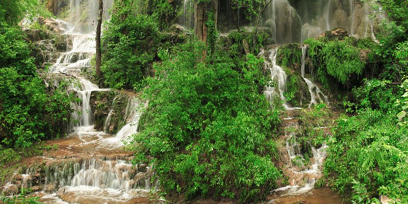 Green Vegetation and Waterfalls