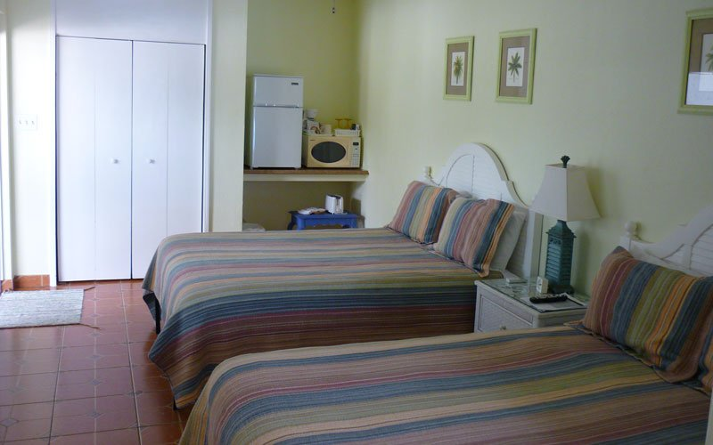 One King size Bed with nightstands, couch, TV, and window