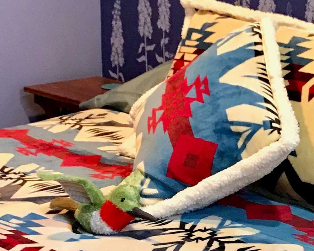 Southwestern Pattern Pillows with Hummingbird