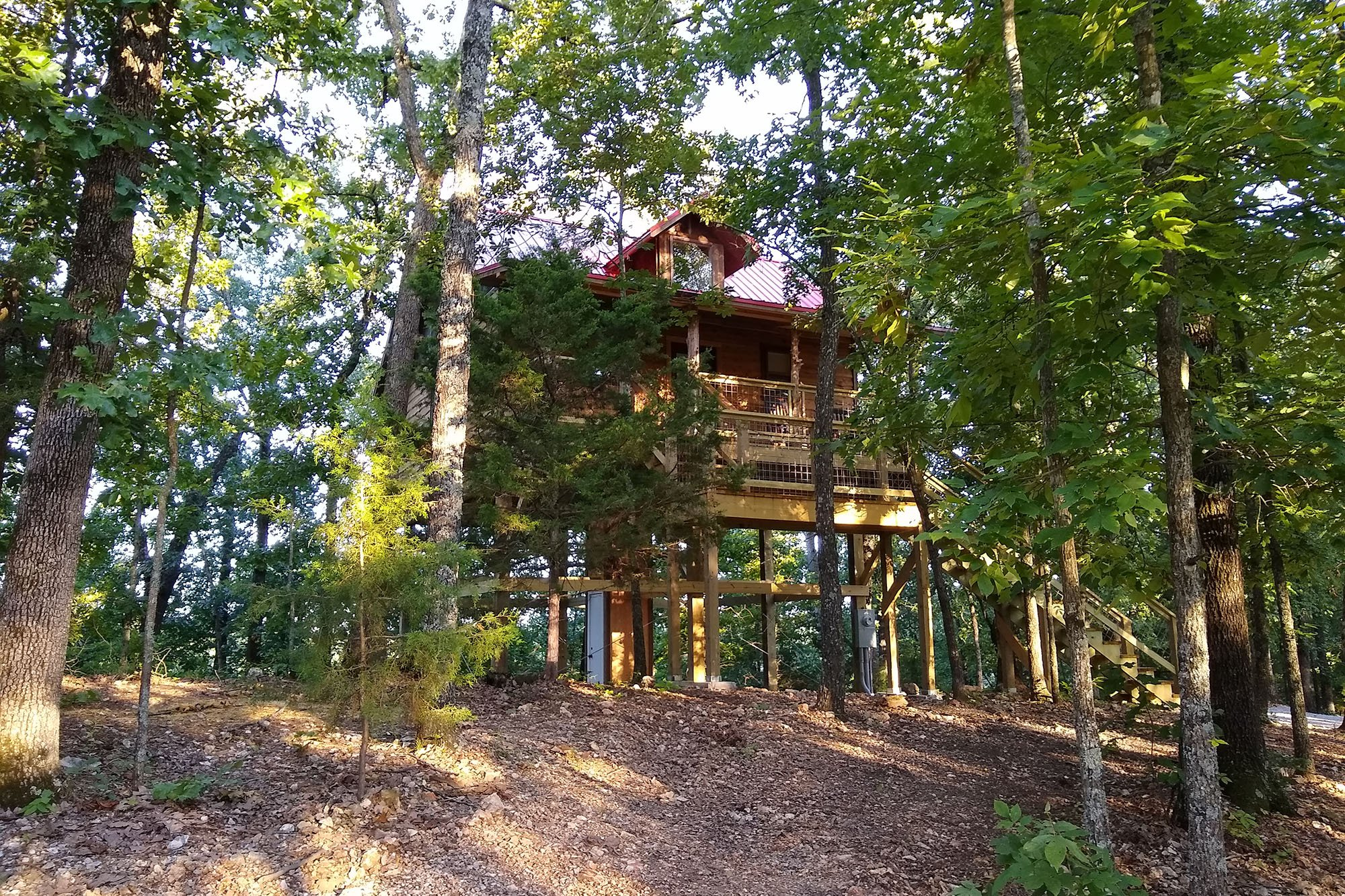 house on stilts on the woods