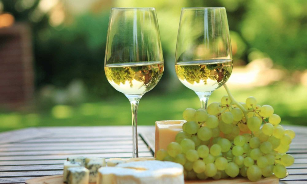 wine glasses with cheese and grapes near vineyard