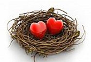Hearts in a bird nest