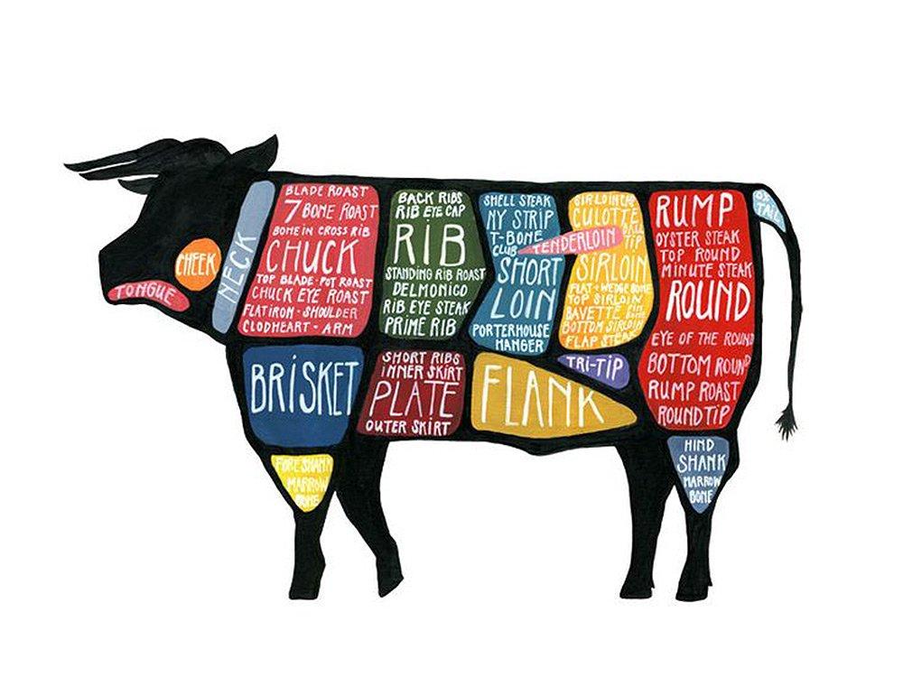 cattle cut diagram