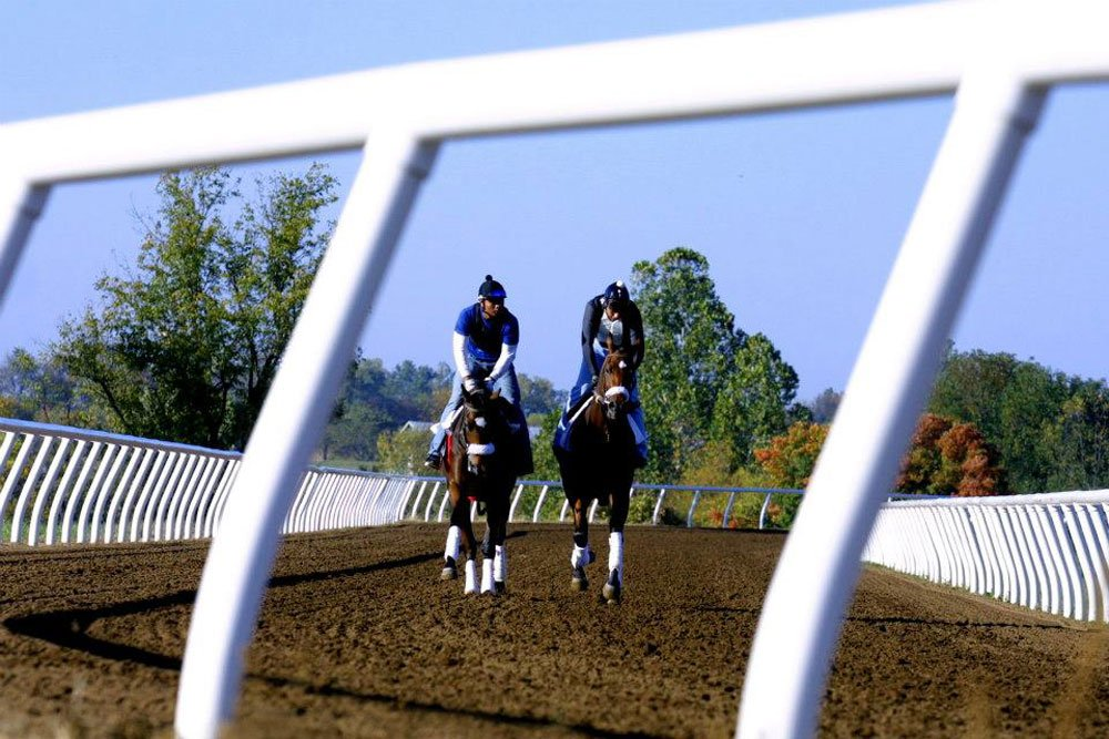 Two jockeys racing horses