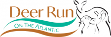 Deer Run on The Atlantic