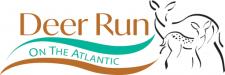 Deer Run on The Atlantic