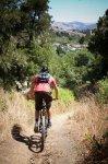 Mountain biker on a trail