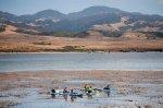 People Kayaking in the bay